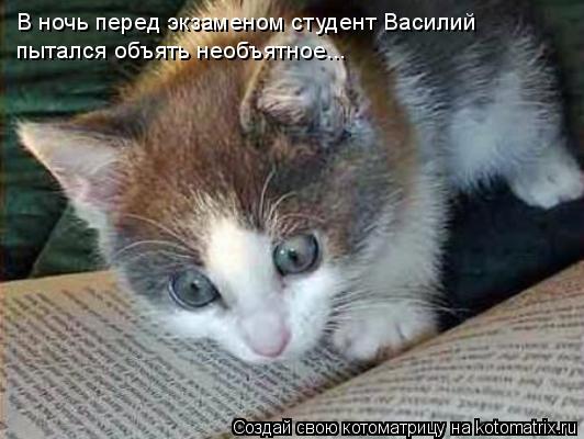 Котоматрица: В ночь перед экзаменом студент Василий  пытался объять необъятное...