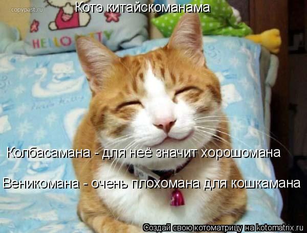 Котоматрица: Котэ китайскоманама Колбасамана - для неё значит хорошомана Веникомана - очень плохомана для кошкамана