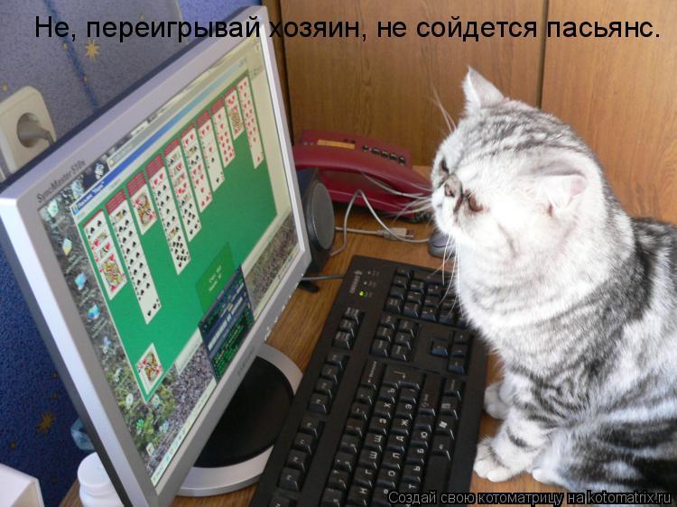 Котоматрица: Не, переигрывай хозяин, не сойдется пасьянс.
