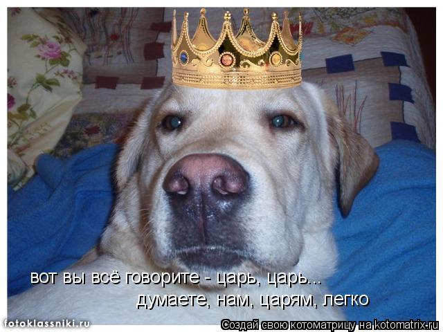 Котоматрица: вот вы всё говорите - царь, царь... думаете, нам, царям, легко