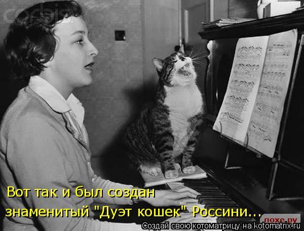"""Котоматрица: Вот так и был создан знаменитый """"Дуэт кошек"""" Россини..."""