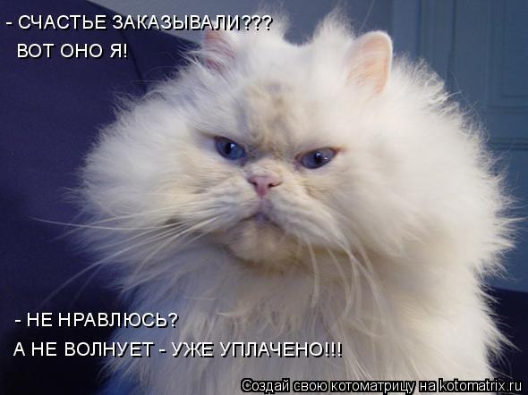 Котоматрица: ВОТ ОНО Я! - НЕ НРАВЛЮСЬ? А НЕ ВОЛНУЕТ - УЖЕ УПЛАЧЕНО!!! - СЧАСТЬЕ ЗАКАЗЫВАЛИ???
