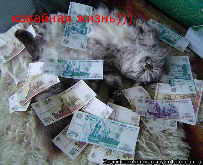 Котоматрица: кавайная жизнь)))
