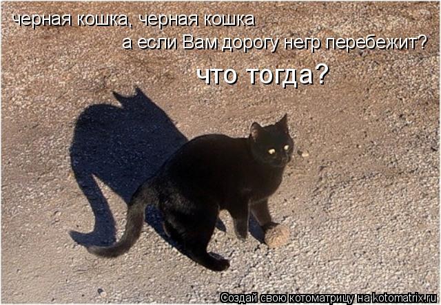 Котоматрица: черная кошка, черная кошка а если Вам дорогу негр перебежит? что тогда?