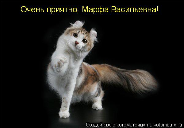 Котоматрица: Очень приятно, Марфа Васильевна!