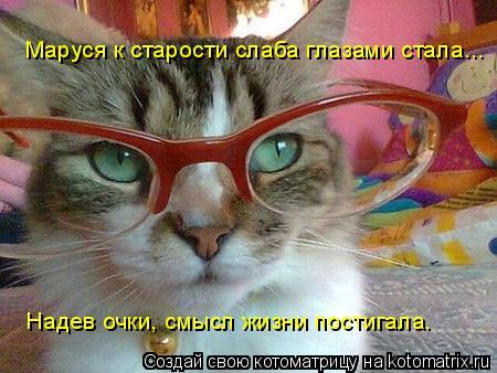 Котоматрица: Маруся к старости слаба глазами стала... Надев очки, смысл жизни постигала.