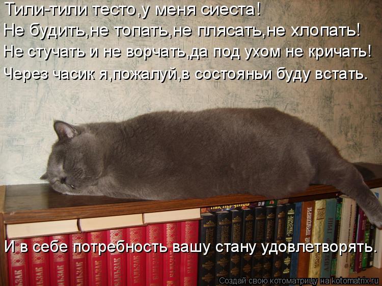 Котоматрица: Тили-тили тесто,у меня сиеста! Не будить,не топать,не плясать,не хлопать! Не стучать и не ворчать,да под ухом не кричать! Через часик я,пожалу