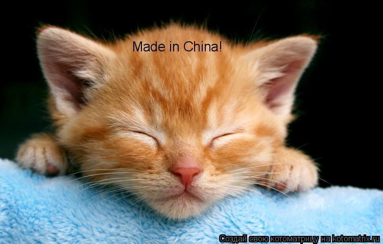 Котоматрица: Made in China!