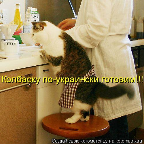 Котоматрица: Колбаску по-украински готовим!!!