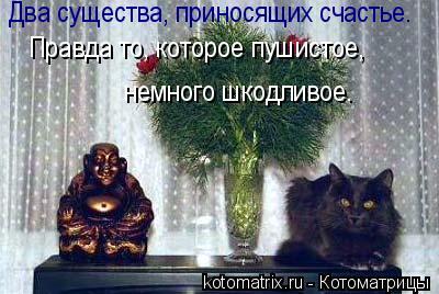 Котоматрица: Два существа, приносящих счастье. Правда то, которое пушистое,   немного шкодливое.