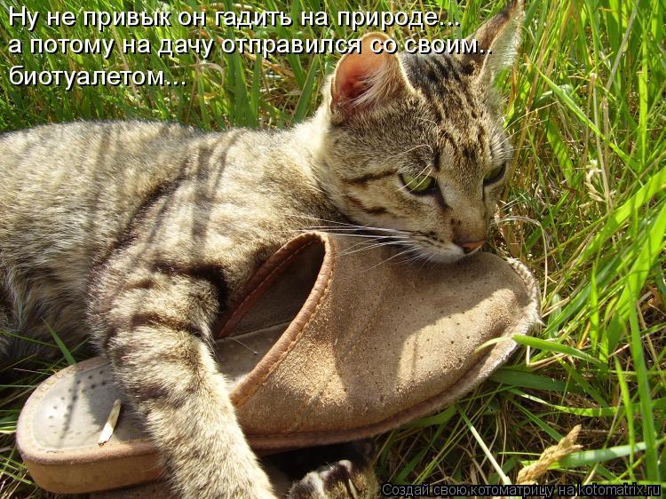 http://kotomatrix.ru/images/lolz/2009/12/15/433540.jpg