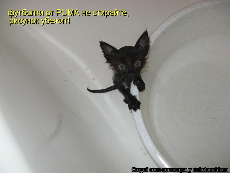 Котоматрица: футболки от PUMA не стирайте, рисунок убежит!