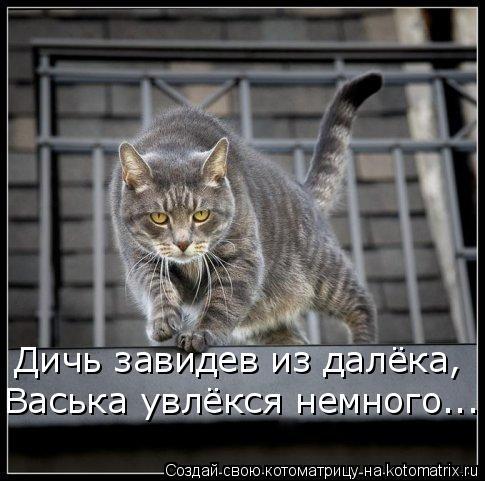 Котоматрица: Дичь завидев из далёка, Васька увлёкся немного...