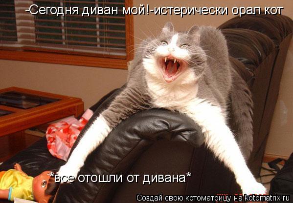 Котоматрица: -Сегодня диван мой!-истерически орал кот *все отошли от дивана*