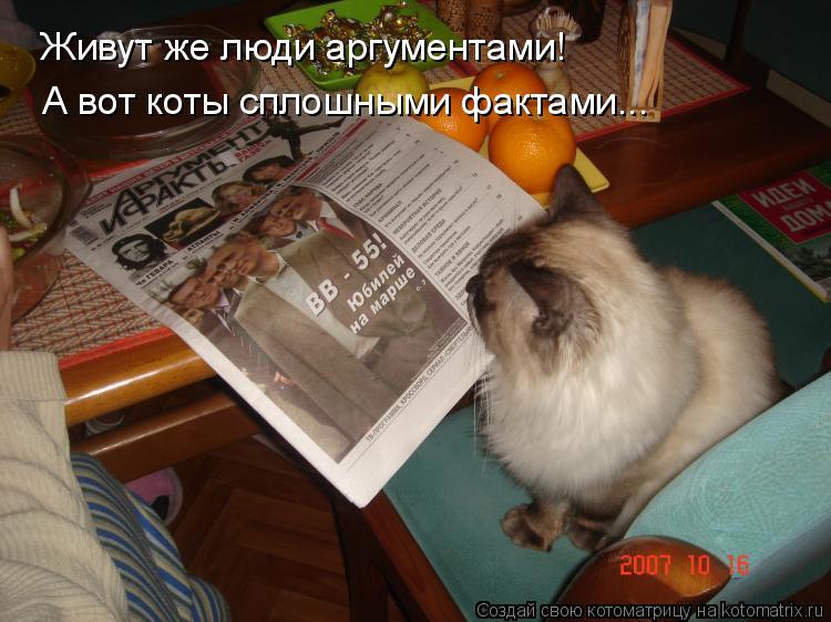 Котоматрица: Живут же люди аргументами! А вот коты сплошными фактами...
