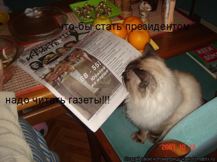 Котоматрица: что-бы стать президентом надо читать газеты!!!