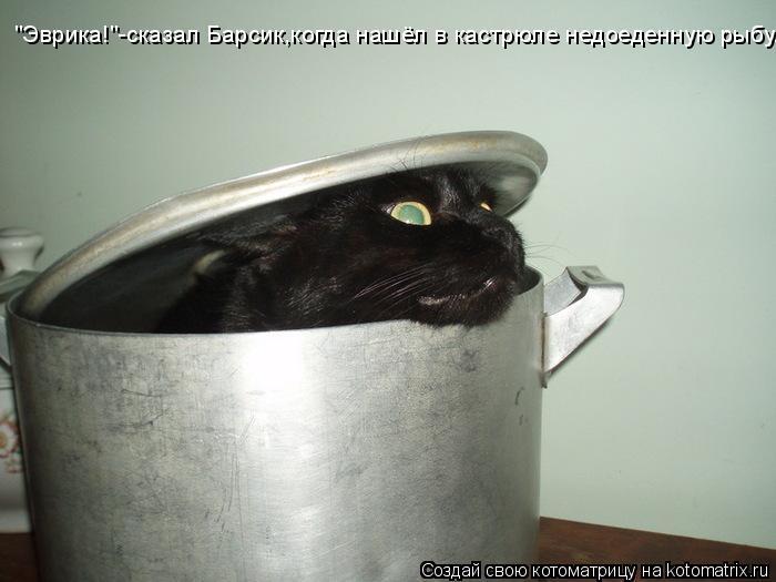 """Котоматрица: """"Эврика!""""-сказал Барсик,когда нашёл в кастрюле недоеденную рыбу."""