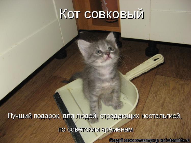 Котоматрица: Кот совковый Лучший подарок, для людей, страдающих ностальгией,  по советским временам
