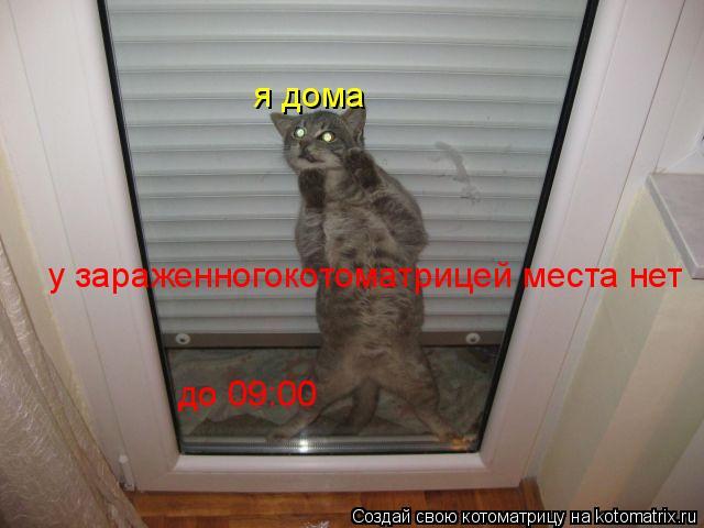 Котоматрица: я дома у зараженногокотоматрицей места нет до 09:00