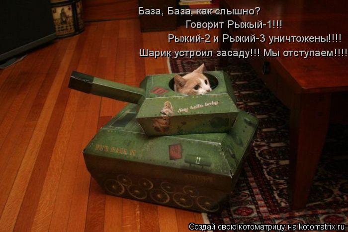 Котоматрица: База, База, как слышно? Говорит Рыжый-1!!! Рыжий-2 и Рыжий-3 уничтожены!!!! Шарик устроил засаду!!! Мы отступаем!!!!