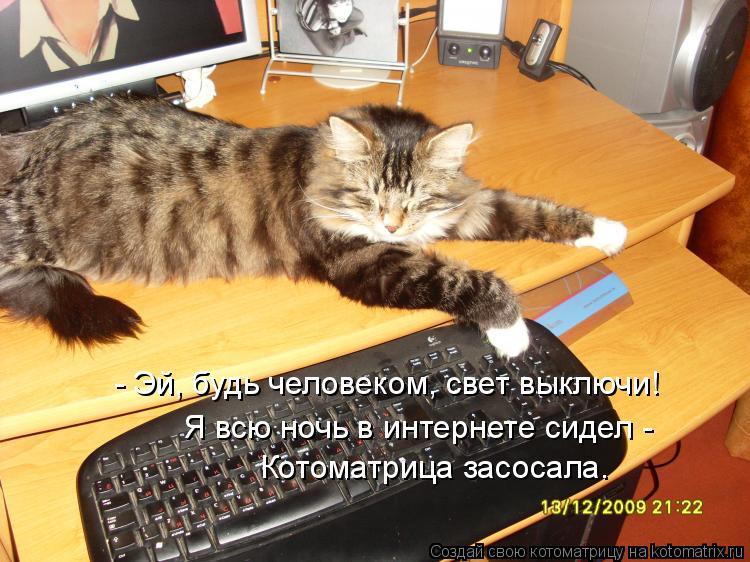 Котоматрица: - Эй, будь человеком, свет выключи! Я всю ночь в интернете сидел - Котоматрица засосала.