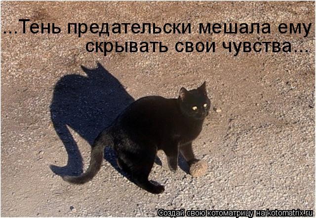 Котоматрица: ...Тень предательски мешала ему скрывать свои чувства...