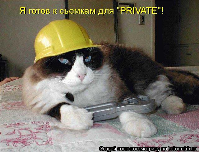 """Котоматрица: Я готов к сьемкам для """"PRIVATE""""!"""