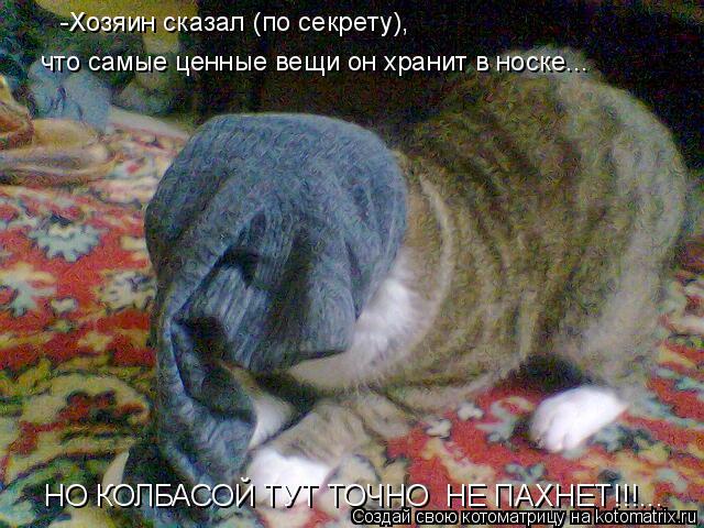 Котоматрица: -Хозяин сказал (по секрету),  что самые ценные вещи он хранит в носке... НО КОЛБАСОЙ ТУТ ТОЧНО  НЕ ПАХНЕТ!!!...