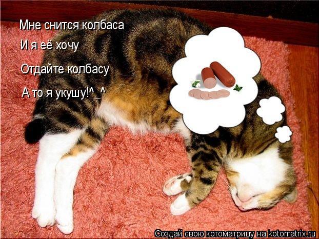 Котоматрица: Мне снится колбаса И я её хочу Отдайте колбасу А то я укушу!^_^