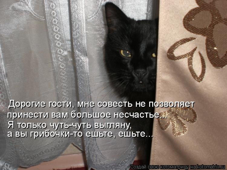 Котоматрица: Дорогие гости, мне совесть не позволяет  Я только чуть-чуть выгляну,  а вы грибочки-то ешьте, ешьте... принести вам большое несчастье...