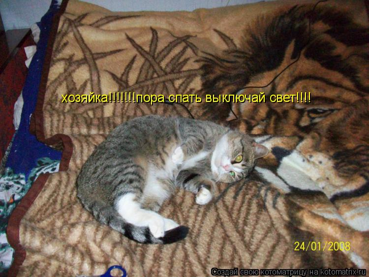 Котоматрица: хозяйка!!!!!!!пора спать выключай свет!!!!