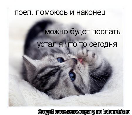 Котоматрица: поел. помоюсь и наконец можно будет поспать. устал я что то сегодня