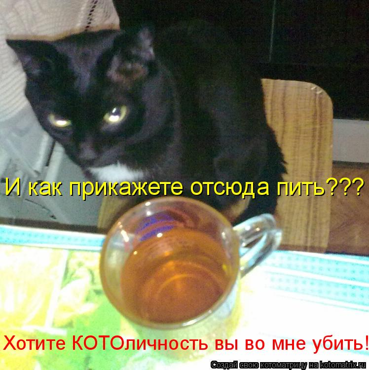 Котоматрица: И как прикажете отсюда пить??? И как прикажете отсюда пить??? Хотите КОТОличность вы во мне убить!??? Хотите КОТОличность вы во мне убить!???
