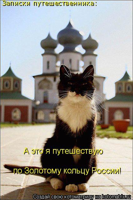 Котоматрица: А это я путешествую по Золотому кольцу России! Записки путешественника:
