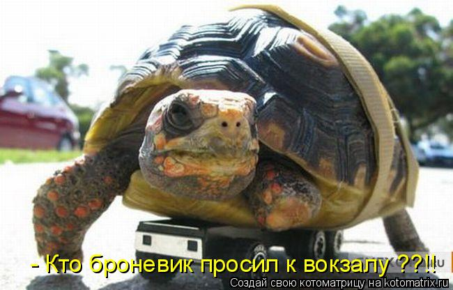Котоматрица: - Кто броневик просил к вокзалу ??!!