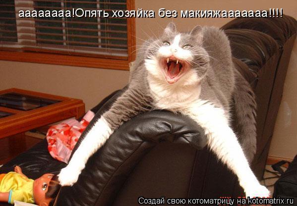 Котоматрица: аааааааа!Опять хозяйка без макияжааааааа!!!!