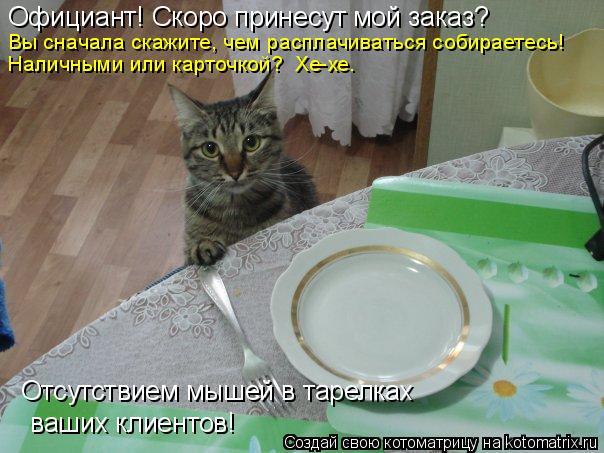 Котоматрица: Официант! Скоро принесут мой заказ? Вы сначала скажите, чем расплачиваться собираетесь! Наличными или карточкой?  Хе-хе…  ваших клиентов! От