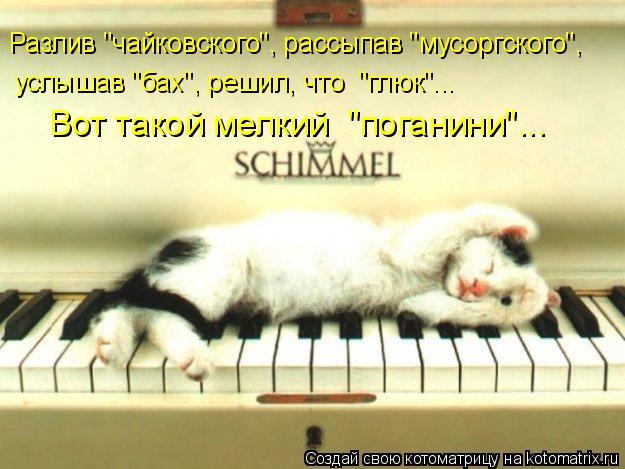 """Котоматрица: Разлив """"чайковского"""", рассыпав """"мусоргского"""", услышав """"бах"""", решил, что  """"глюк""""... Вот такой мелкий  """"поганини""""..."""
