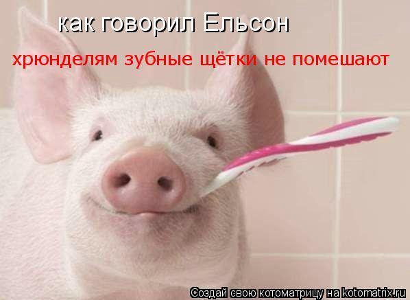 Котоматрица: как говорил Ельсон хрюнделям зубные щётки не помешают