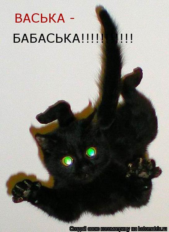 Котоматрица: ВАСЬКА -  БАБАСЬКА!!!!!!!!!!!