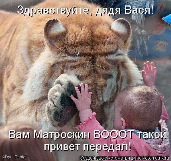 Котоматрица: Здравствуйте, дядя Вася! Здравствуйте, дядя Вася! Вам Матроскин ВОООТ такой  привет передал!