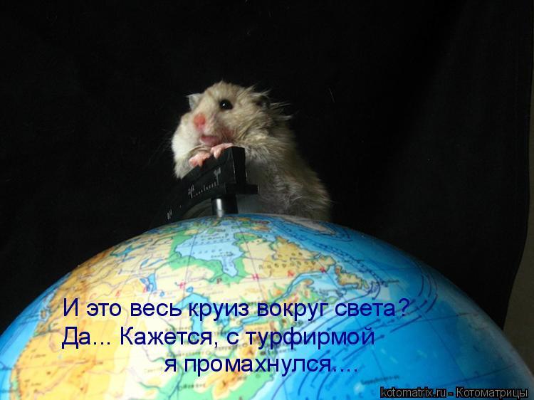 Котоматрица: И это весь круиз вокруг света? Да... Кажется, с турфирмой  я промахнулся....