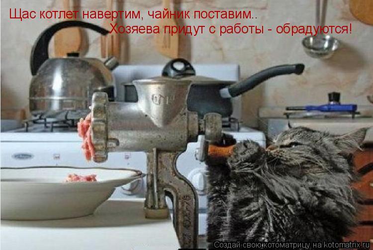 Котоматрица: Щас котлет навертим, чайник поставим.. Хозяева придут с работы - обрадуются!