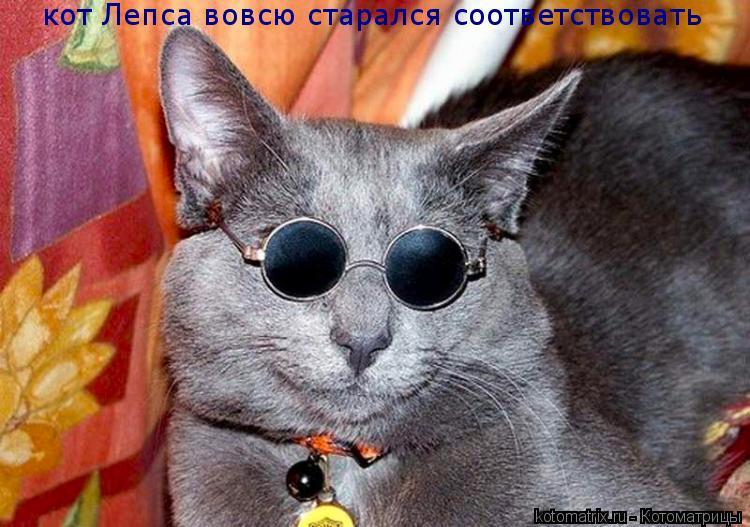 Котоматрица: кот Лепса вовсю старался соответствовать