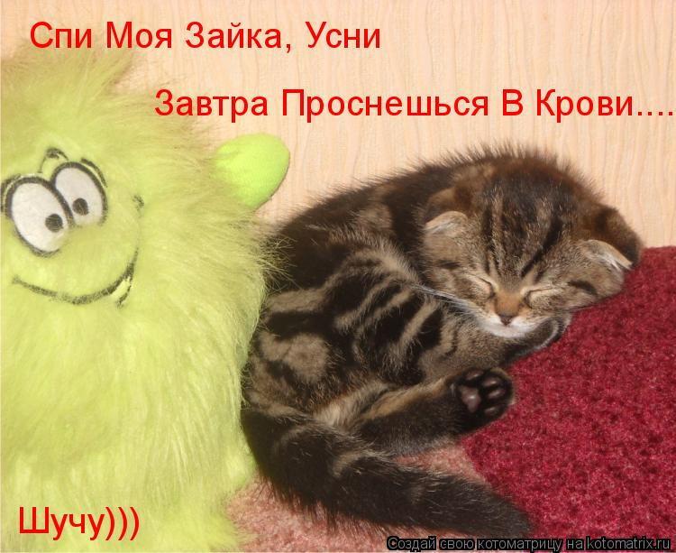 Котоматрица: Спи Моя Зайка, Усни Завтра Проснешься В Крови.... Шучу)))