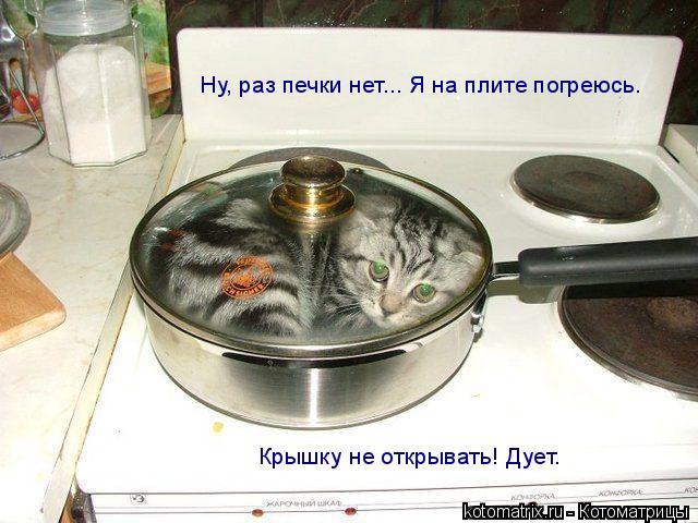 Котоматрица: Крышку не открывать! Дует. Ну, раз печки нет... Я на плите погреюсь.