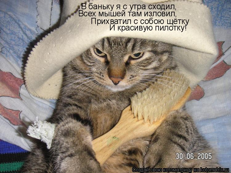 Котоматрица: В баньку я с утра сходил, Всех мышей там изловил, Прихватил с собою щётку И красивую пилотку!