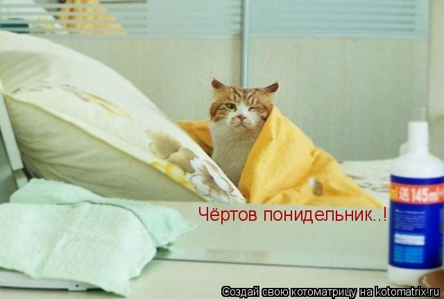 Котоматрица: Чёртов понидельник..!