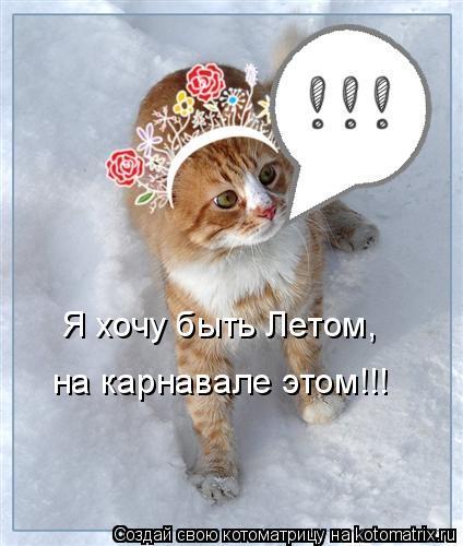 Котоматрица: Я хочу быть Летом, на карнавале этом!!!