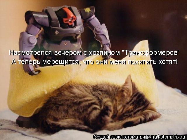 """Котоматрица: Насмотрелся вечером с хозяином """"Трансформеров"""" А теперь мерещится, что они меня похитить хотят!"""